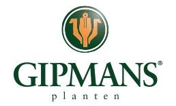 Gipmans Planten, Venlo