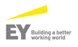 Ernst & Young accountants